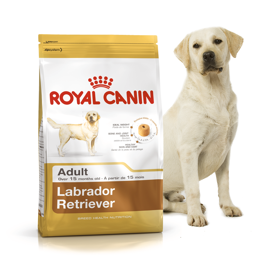 Royal Canin (Роял Канин) Labrador Retriever Adult 30 корм для лабрадоров